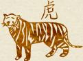 Совмещение гороскопа тигра с зодиакальным гороскопом